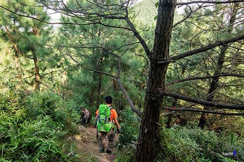 Vào rừng ngày mưa dễ có nhiều muỗi, vắt.